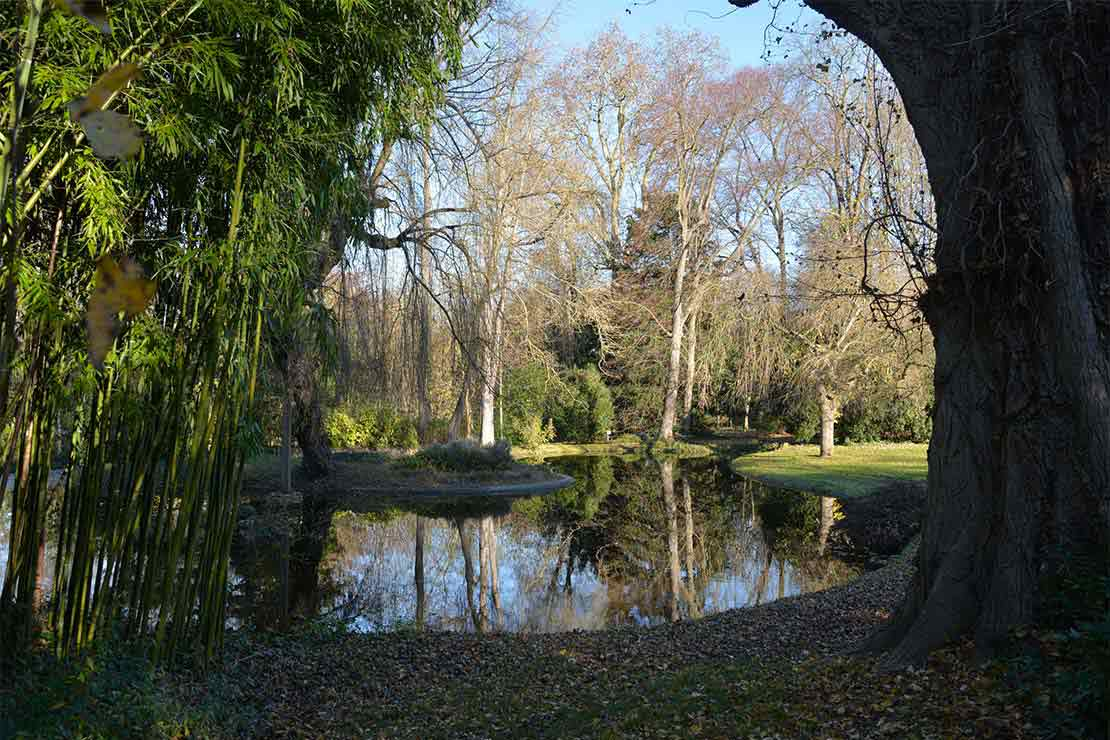 location-salle-hautsdeseine-rueil-malmaison-demeure-chateau-vue-parc2
